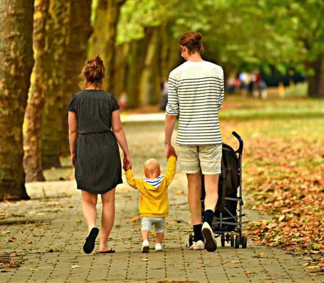 Verfügungen über Einzelgegenstände als Verfügungen über das Vermögen im Ganzen, § 1365 BGB · Familienrecht ·  Problem Zivilrecht